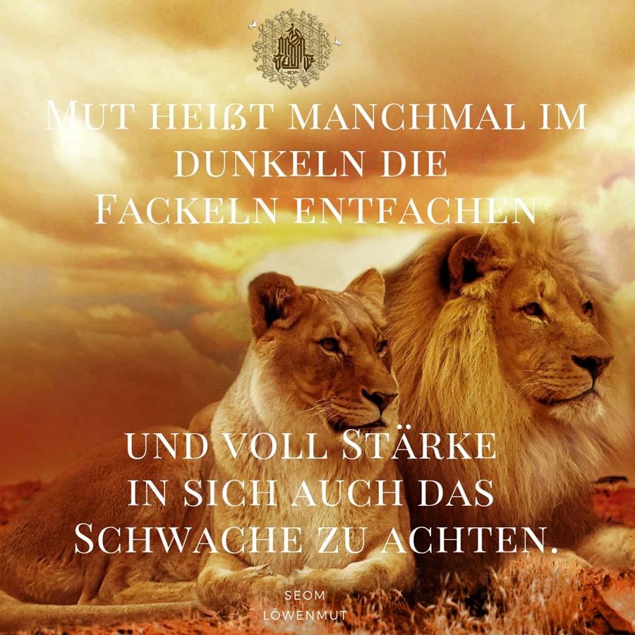 Löwen auch schwaches achten 2